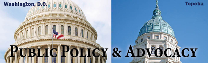 Public Policy & Advocacy Committee