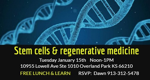 Stem cell Lunch & Learn